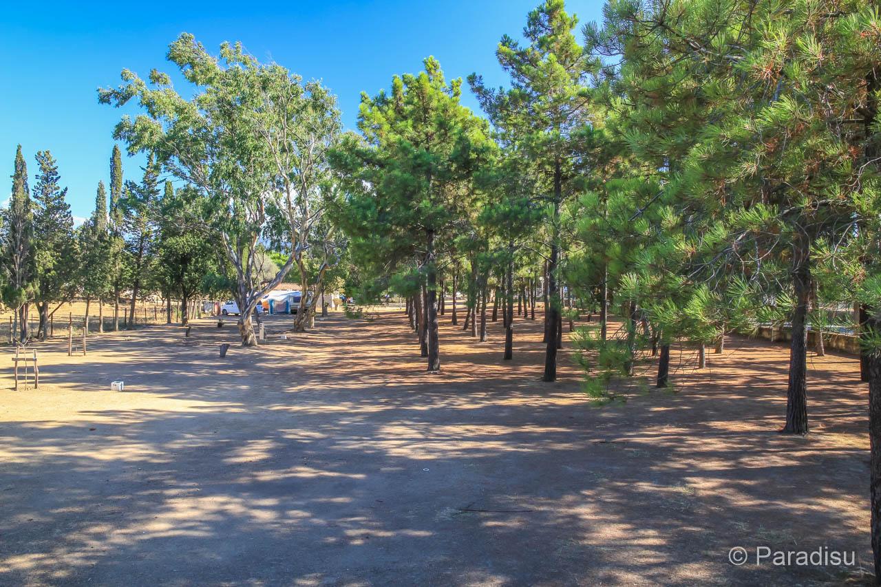 Camping U Caseddu
