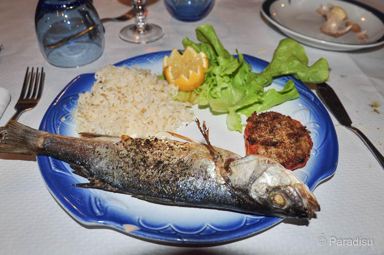 Fisch Wolsbarsch Loup de Mer
