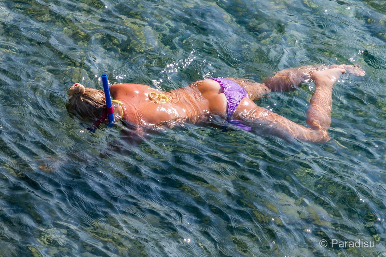Le Snorkeling En Corse - Schnorcheln Auf Korsika