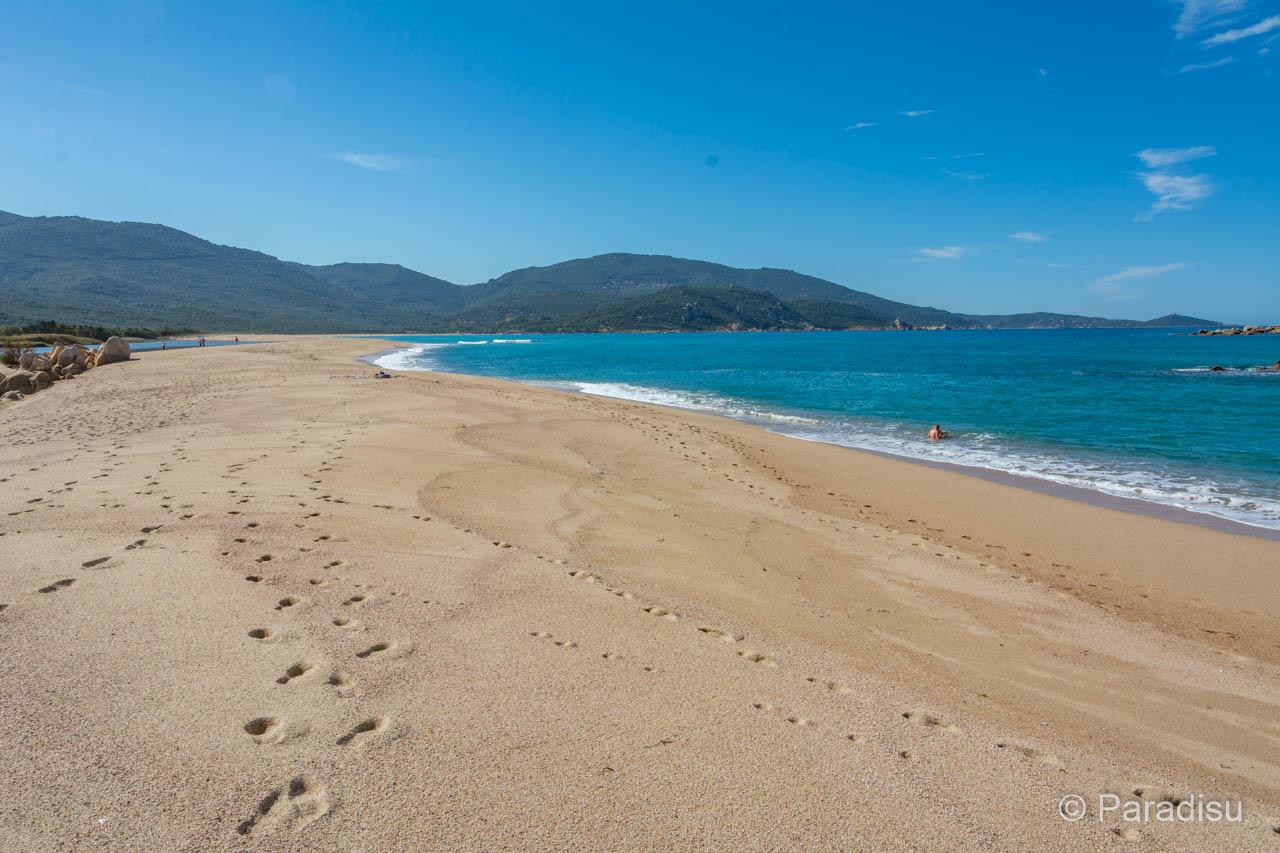 Strand Von Laurosu Strände Im Golf Von Valinco