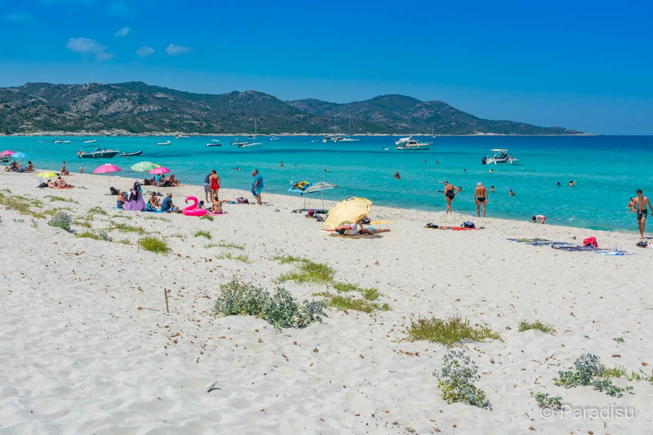 Strand Von Saleccia