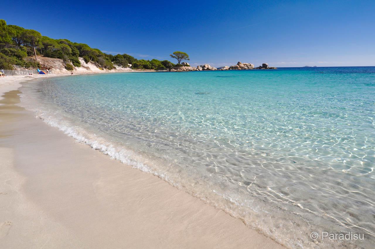 Strand Von Tamarucciu