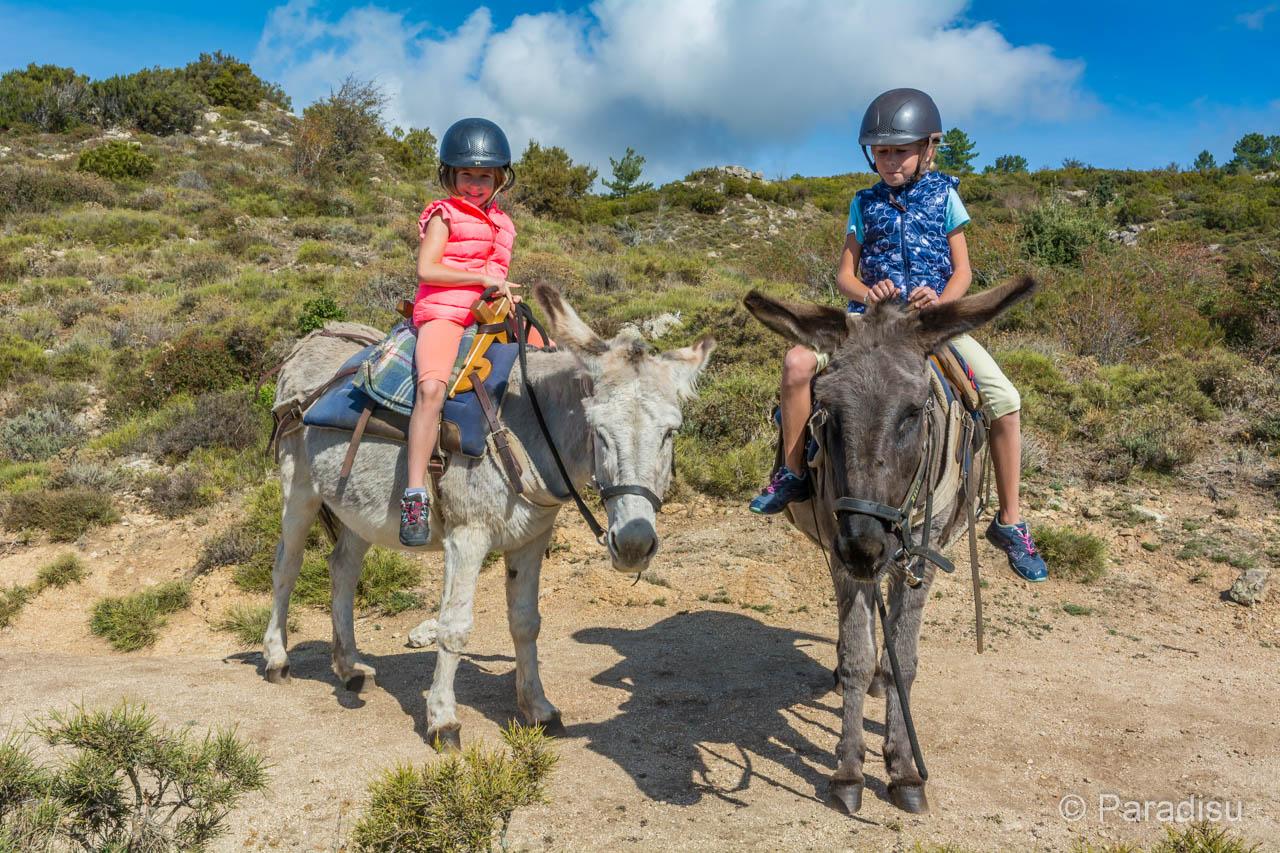 Alta Rocc Anes - Wandern Mit Esel