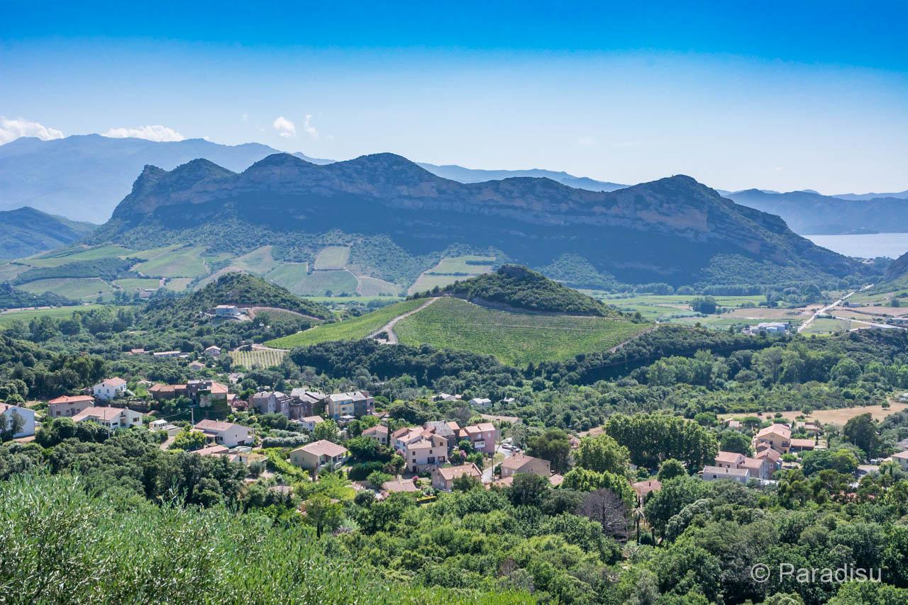 Weinregion Patrimonio