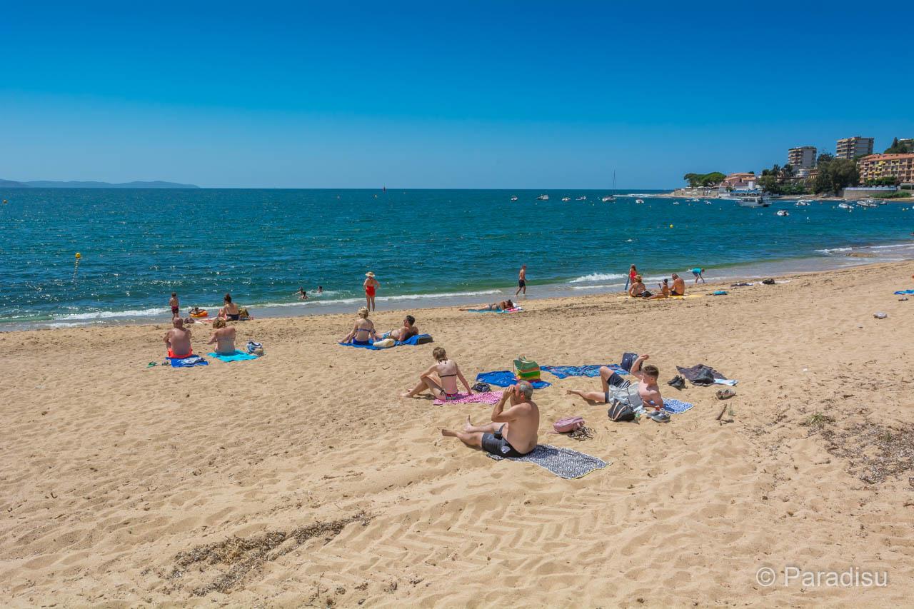 Strand Von Trottel