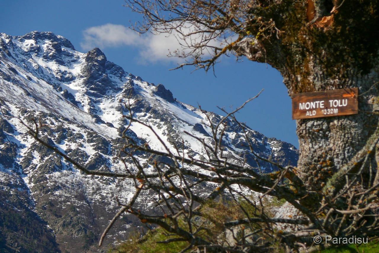 Wanderung Monte Tolu